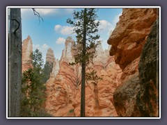 Bryce Canyon - The Wall