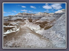 Painted Desert - Blue Mesa
