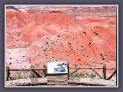 Painted Desert - Finding Fossils